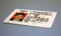 В России ввелось международное водительское удостоверение